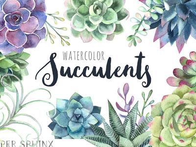 Watercolor Succulents Clipart - FREE Download
