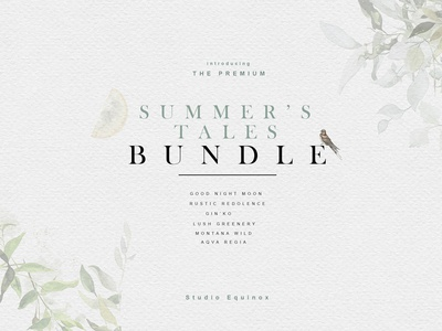 Summer's Tales BUNDLE