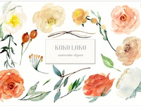 Koko Loko. Watercolor floral clipart - FREE Download
