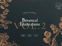 Botanical Illustrations Vol. 2