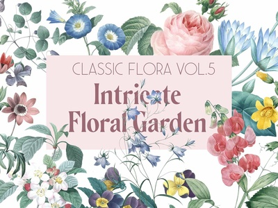 Botanical Illustrations - Garden