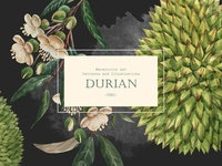 Watercolor Durian Set (PNG)