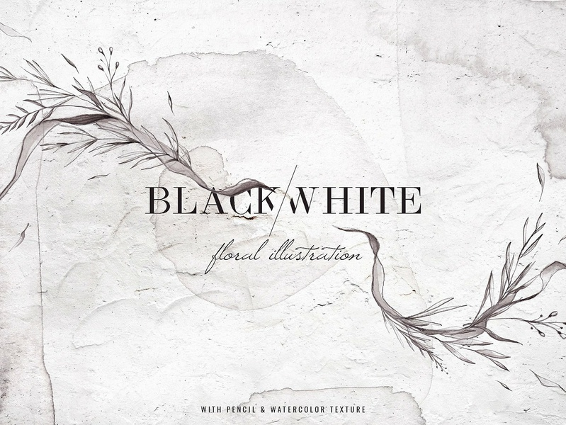 Black White Watercolor Floral By Graphic Assets On Dribbble
