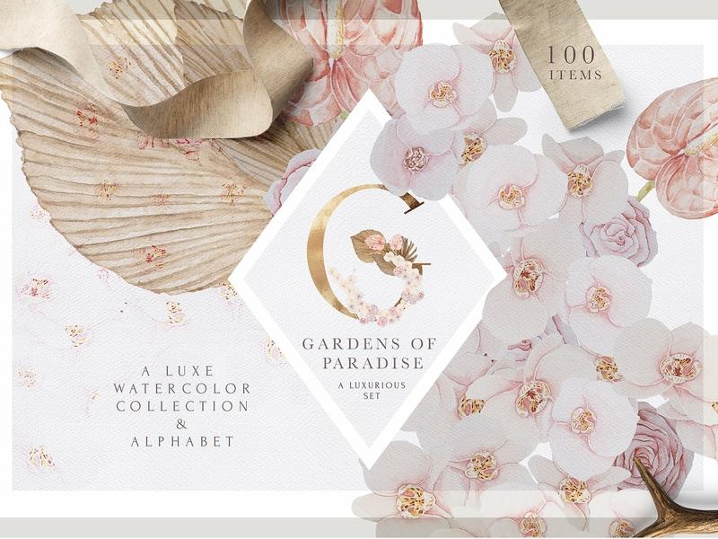 Luxury Blush Boho Wedding Set By Graphic Assets On Dribbble