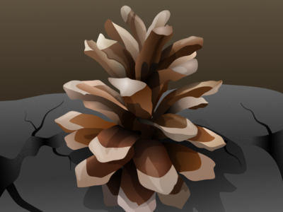 Pine realistic vector vector drawing nature drawing affinity designer madeinaffinity