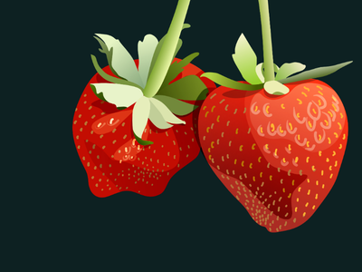 Strawberries vector art affinity for ipad vector art fruit vector strawberries strawberries strawberry
