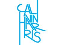 Calvin Harris Type