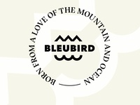 Brand development work for Bleubird Apparel