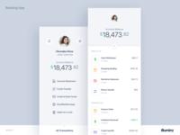 Mobile Banking App Concept - Light