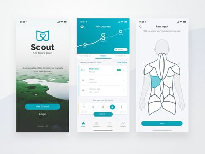 Scout ios interaction tracking chronic pain mobile ux ui