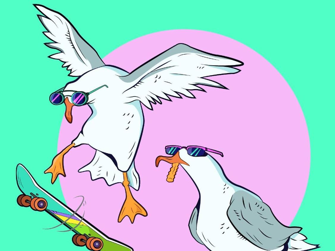 Tony Squawks illustration art seagulls vector skateboarding skate illustration