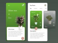 Mobile App - Tree Plant