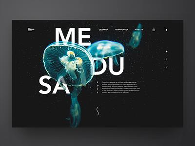 MEDUSA Landing page header medusa landing page ui inspiration sea jellyfish blue dark