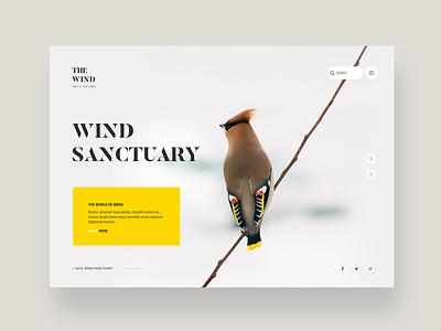 Birds sanctuary website's homepage concept light white logo typography bird web design ui ux clean flat