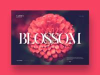 Garden website design concept