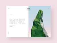 Nature's website design concept