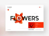 Flowers eShop : e-commerce website design