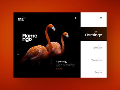 Bird Sanctuary : Website design concept creative bird minimal landing page dark ui typography web design clean
