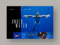 Scuba Diving Website Design Concept