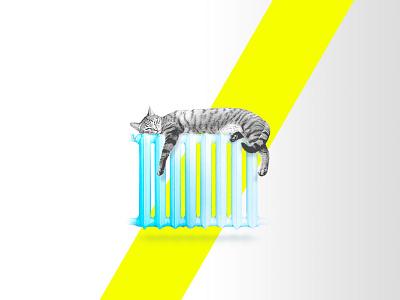 Cat on radiator yellow contrast battery radiator cat