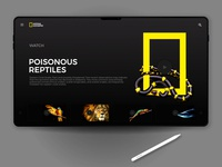 National Geographic landing page