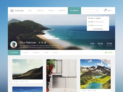 PicFlow Concept ui ux concept minimal photography pictures photos photo ultralinx feed masonry grid