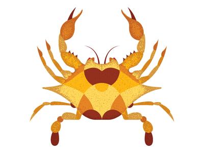 Geometric Crab