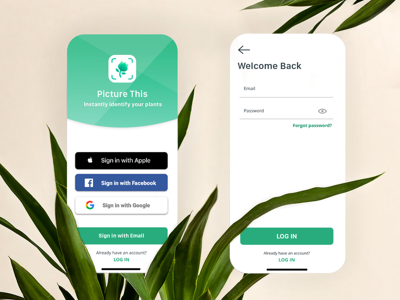 Picture This App dribbbleweeklywarmup artificial intelligence ai design weeklywarmup sign in sign up signup registration ui design ux uiux sketch photoshop retouch image recognition nature ui login app