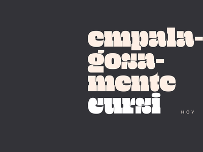 Type and songs brutalist design layout design minimal typography