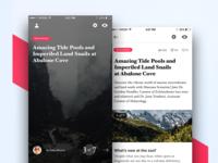 News App Part 2