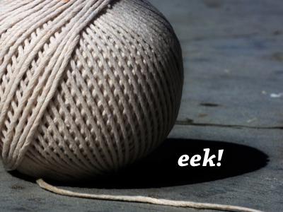 Mystery presentation slide eek string chaparral