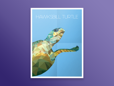 Hawksbill Turtle vector 2d animal design poster print poly ai ps turtle