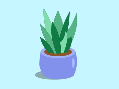 Succulent plants succulent 100daysofcmbos illustration creativemornings 100daysproject 100daysofillustration