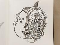 Half head