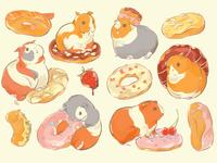 Guinea Pig Donuts