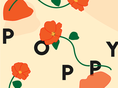 Poppy Exploration poppy floral typography illustration