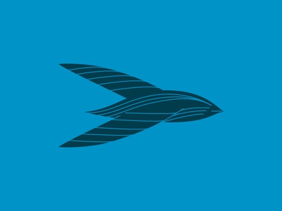 Swift Bird Concept III