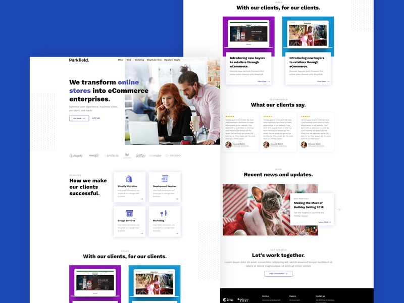 Ecommerce Consulting Website