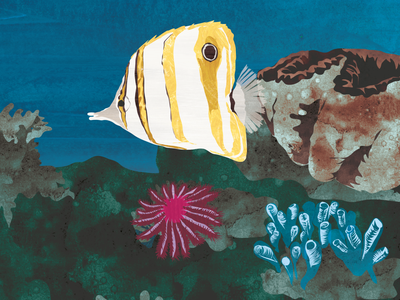 Corals drawing design book children books animal art digital illustration