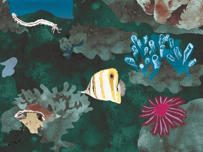 Corals digitalart animal books nature children book art digital illustration
