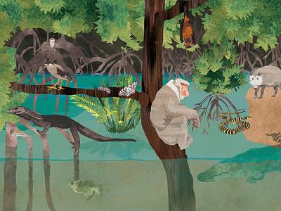 The Mangrove forest digitalart drawing nature children animal art book character digital illustration