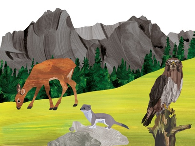 The Mountains art digital drawing character animal nature illustration