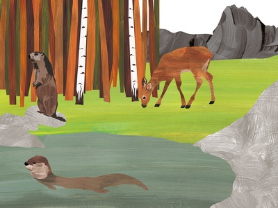 The Cervus nature illustration digital cervus children character books book art animal