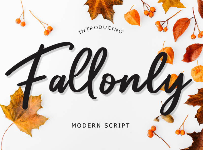 Fallonly Modern Script Font creative design modern lettering abc design calligraphy typography script font font script
