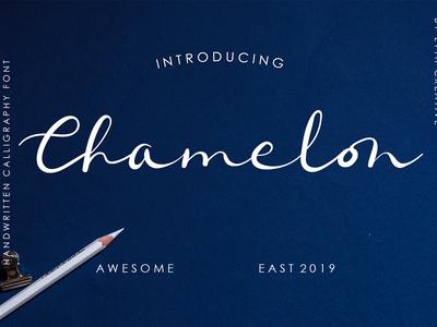 Chamelon Font typhography handwriten calligraph font design font awesome font