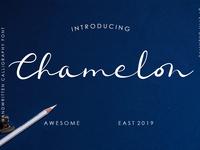 Chamelon Font