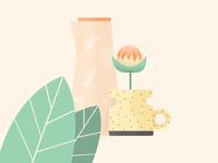 Plants & ceramics 5