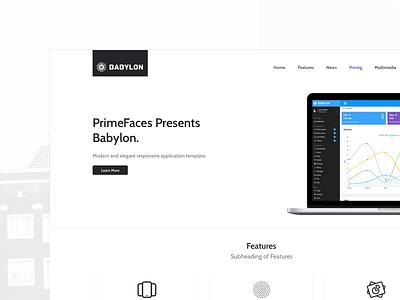 Babylon Landing icon design ui primeng primefaces template layout landing  page landing babylon
