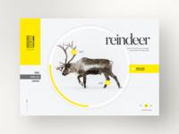 Reindeer Snow Life : Website Design