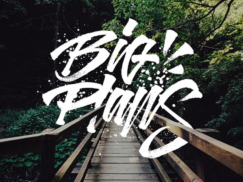 Big Plans - Brushpen Sketch typography type tshirt logo letters lettering illustration design calligraphy brushpen